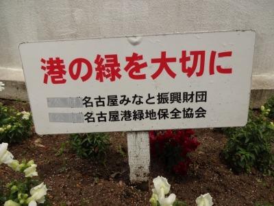 名古屋港水族館前花壇の植栽R2.6.3_d0338682_14462257.jpg