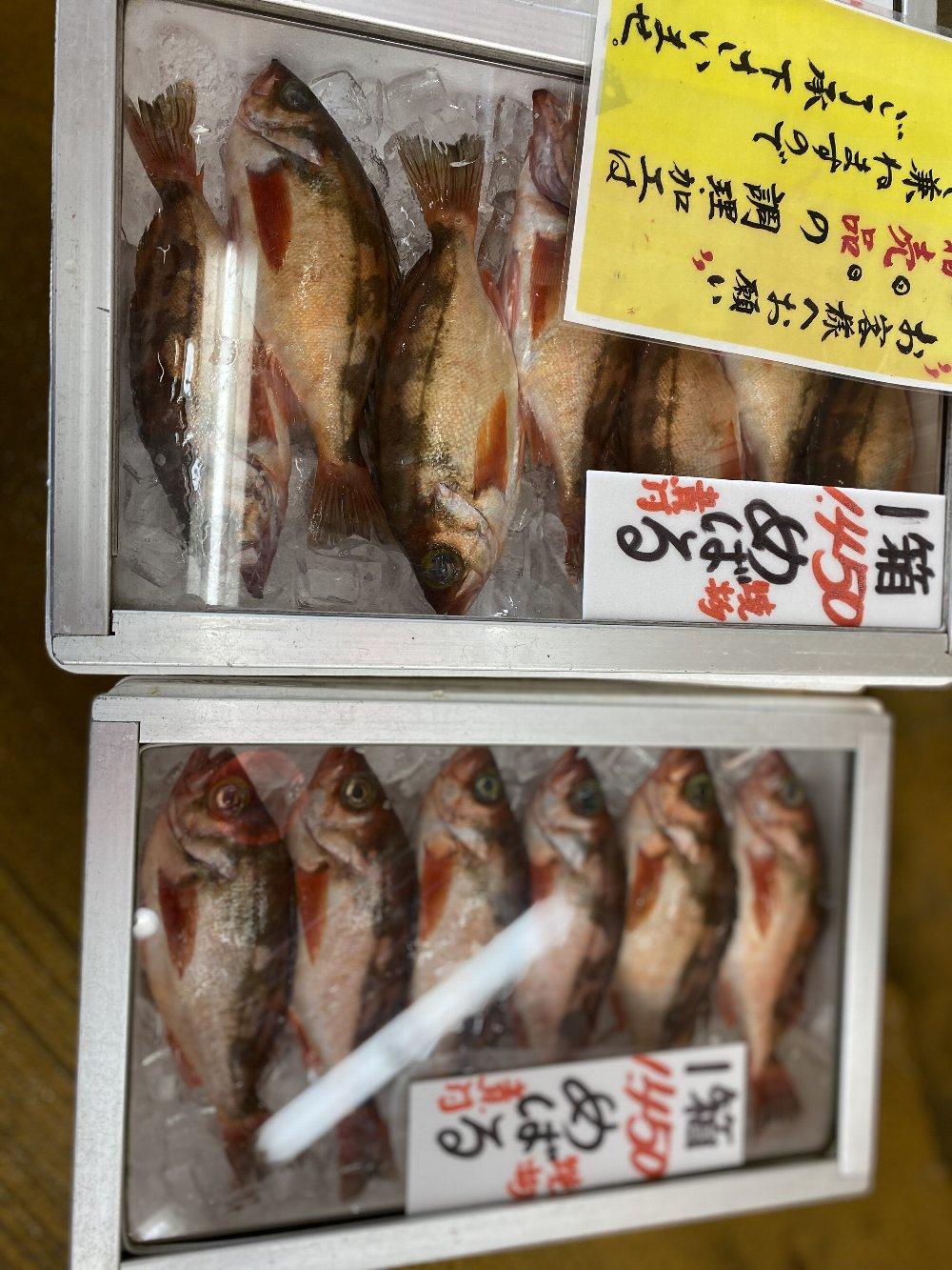 直江津魚勢!_e0065084_2226365.jpg