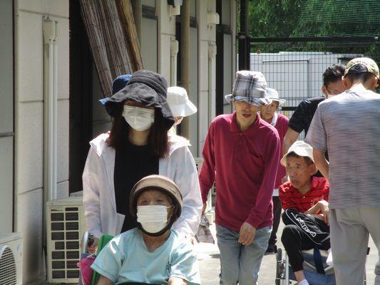 6/3 散歩_a0154110_09241611.jpg