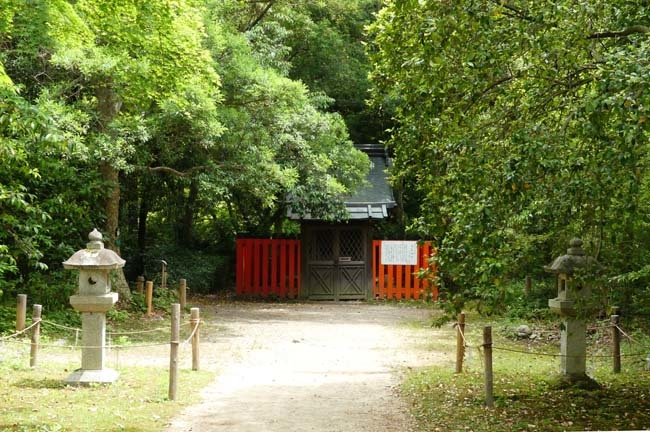 京都府立植物園 散策_e0048413_20320386.jpg