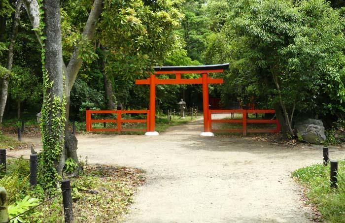 京都府立植物園 散策_e0048413_20320810.jpg