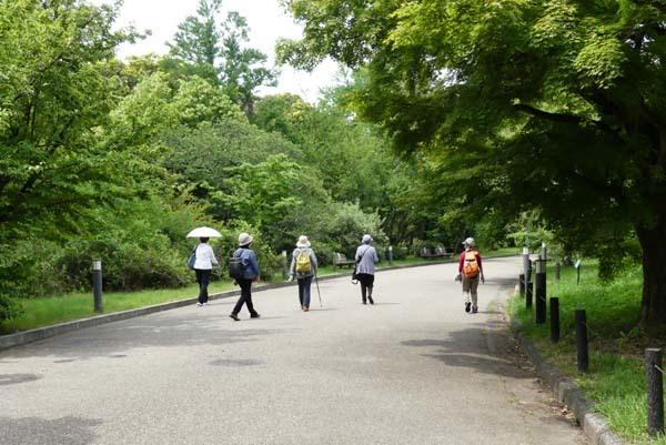 京都府立植物園 散策_e0048413_20323397.jpg