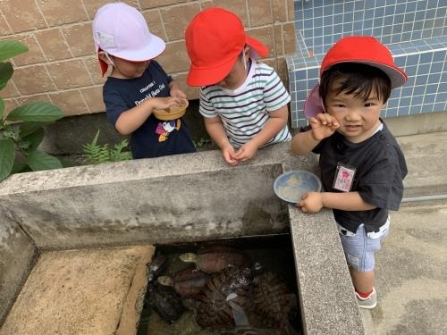 幼稚園が始まりました_c0107515_15501992.jpeg