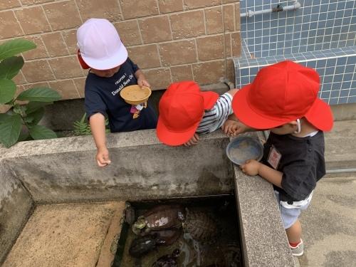 幼稚園が始まりました_c0107515_15505443.jpeg