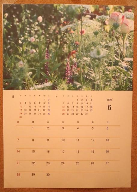 6月のカレンダーとやっぱりバラ活~♪_e0397815_21005426.jpg