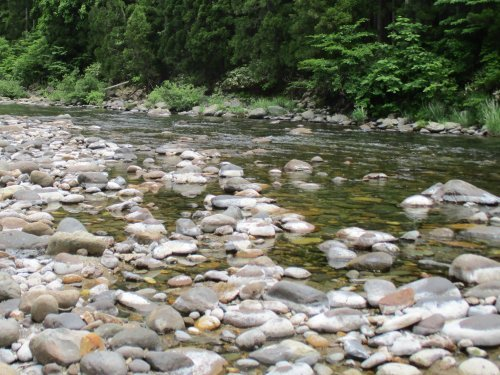 やっと川に行けました。_e0198329_18012719.jpg