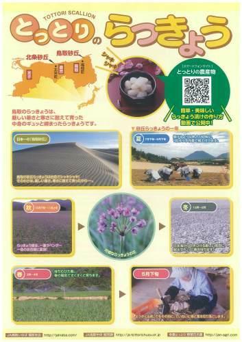 市場へGOGO! 6/2 RSKラジオ_b0171839_14270813.jpg