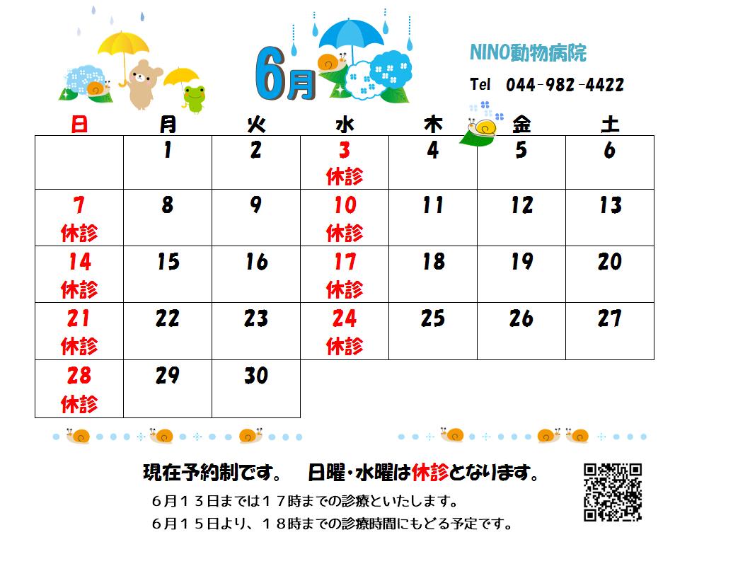 6月の診療日のお知らせ☆_e0288670_16074441.png