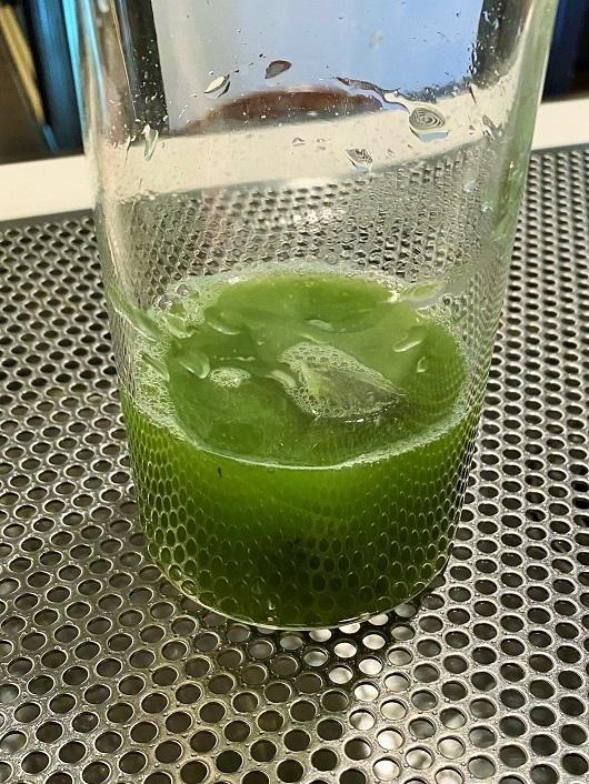 NEW夏香る水出し緑茶シリーズ登場_c0335087_13111666.jpg