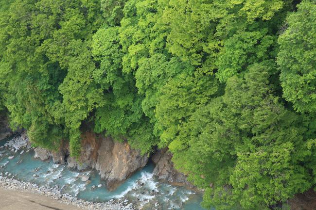水を湛えた八ッ場ダムと沈んだ風景 #1 _a0357206_21414089.jpg