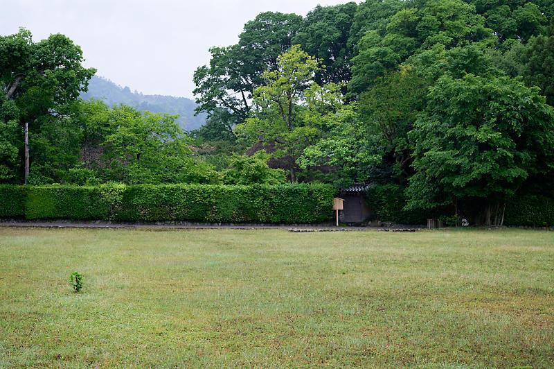 雨の日の愛宕街道寸景_f0032011_18371033.jpg