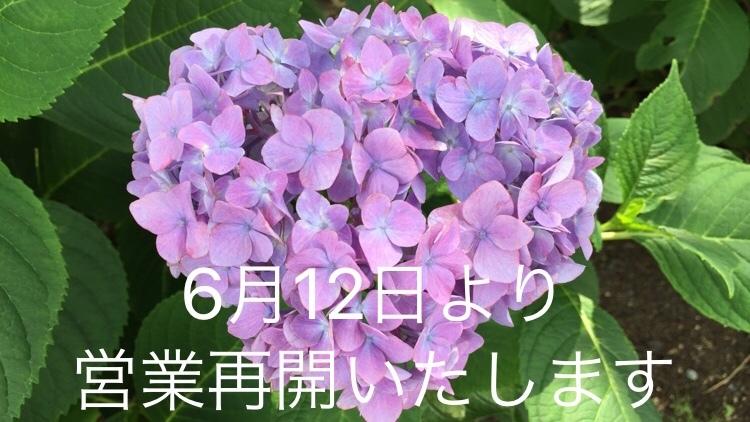 6月12日(金)より店舗営業再開いたします。_d0108933_22392845.jpg