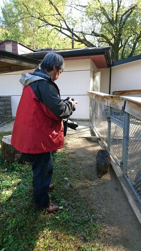 池田市 ウォンバット 写真展_f0050534_22445315.jpg