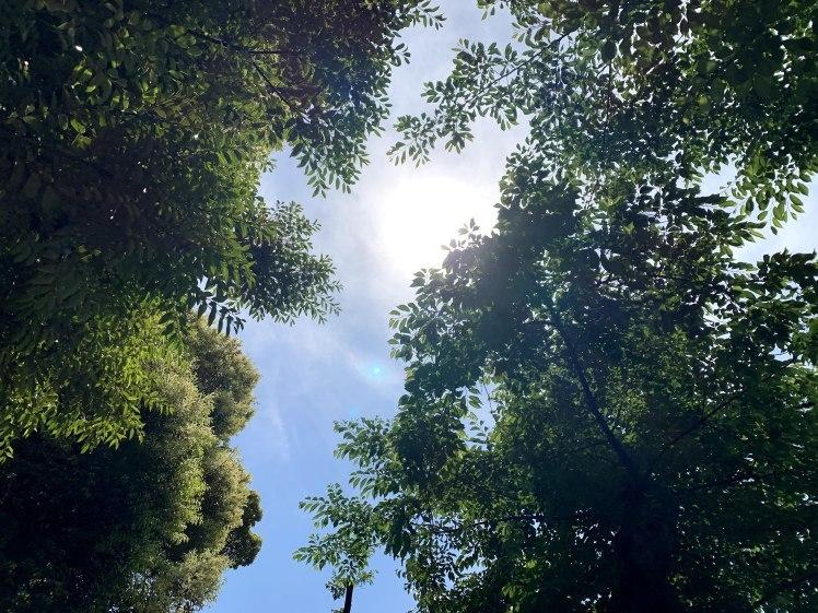 霊性を磨き、霊的感性を磨き、この世にグラウディングする。~気持ちいい空と景色と~_b0298740_00144432.jpg