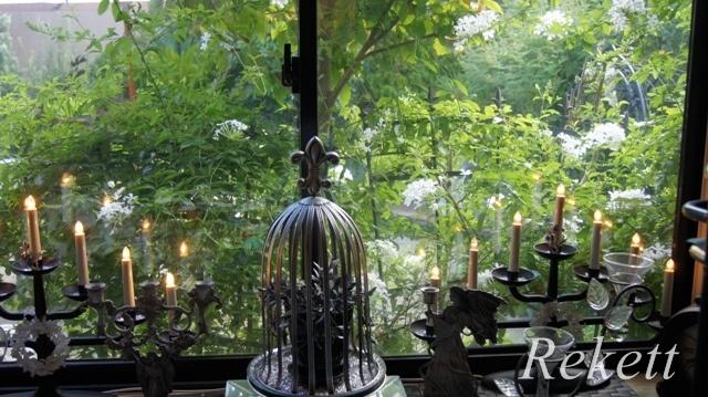 窓から眺めるホワイトカラーの花~_f0029571_00174692.jpg