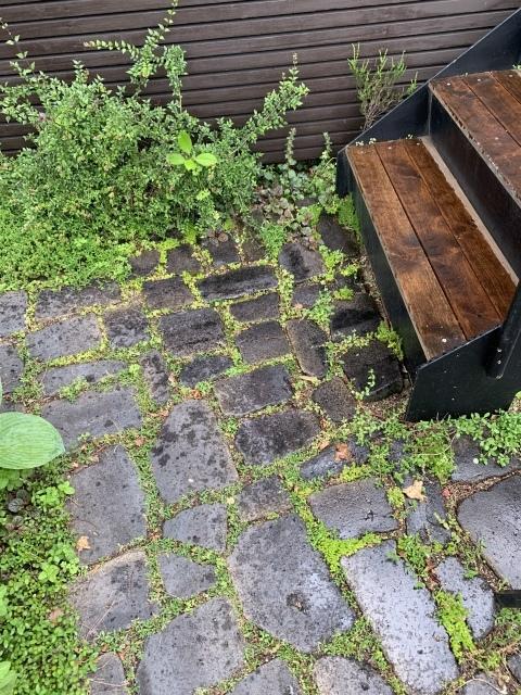 梅雨と相性の良いアプローチとグリーンの効果_c0274374_00171026.jpeg