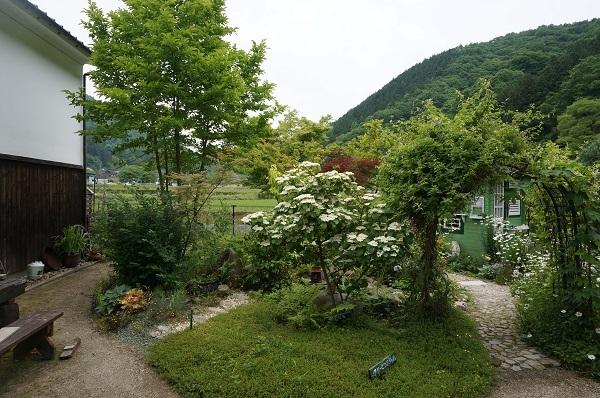お風呂から見える庭_e0365880_14465749.jpg
