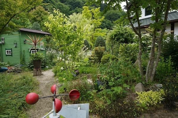 お風呂から見える庭_e0365880_14484111.jpg