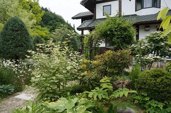 お風呂から見える庭_e0365880_14491278.jpg