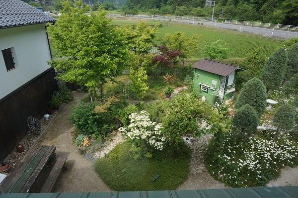 お風呂から見える庭_e0365880_15082243.jpg
