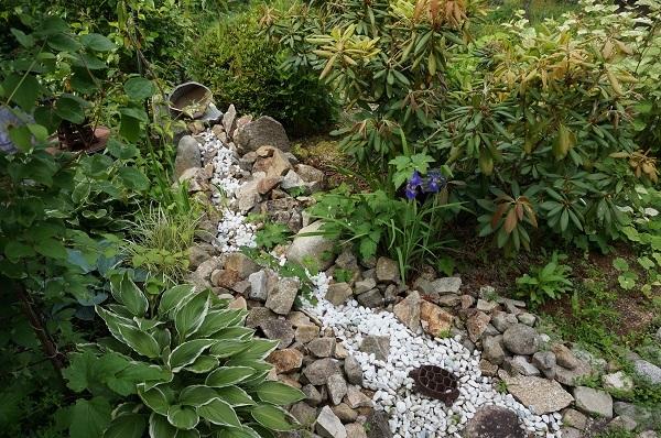 お風呂から見える庭_e0365880_15265381.jpg
