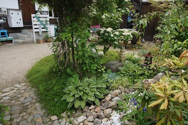 お風呂から見える庭_e0365880_15281110.jpg