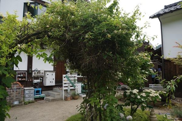 お風呂から見える庭_e0365880_15285720.jpg
