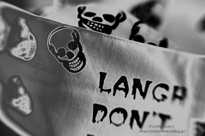*skull*_b0391986_15472758.jpg