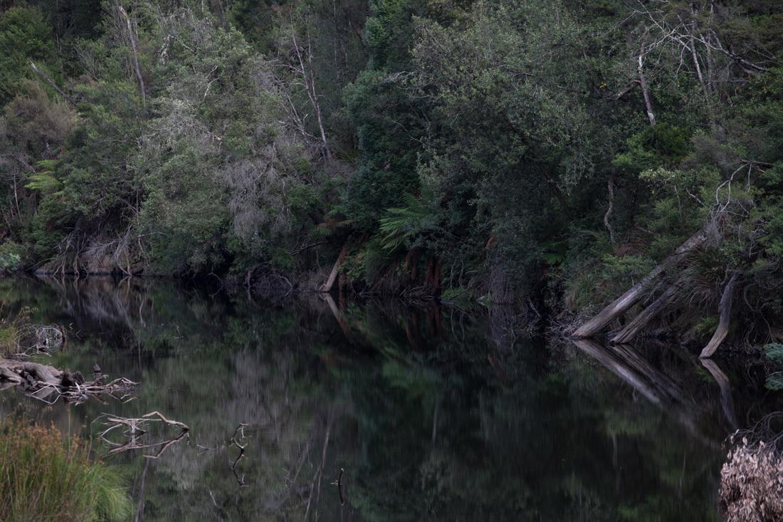 鏡面効果の高い川面 <タスマニア>_c0248100_20295281.jpg