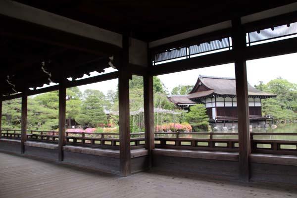 平安神宮 神苑の花菖蒲など_e0048413_20254239.jpg