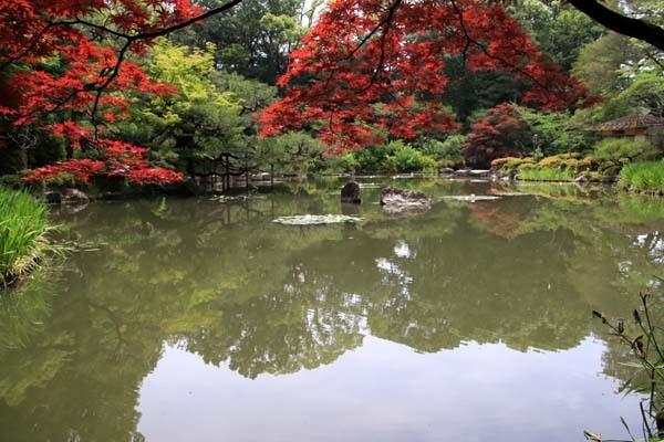 平安神宮 神苑の花菖蒲など_e0048413_20254958.jpg