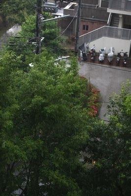 雷雨_b0289422_18101374.jpg