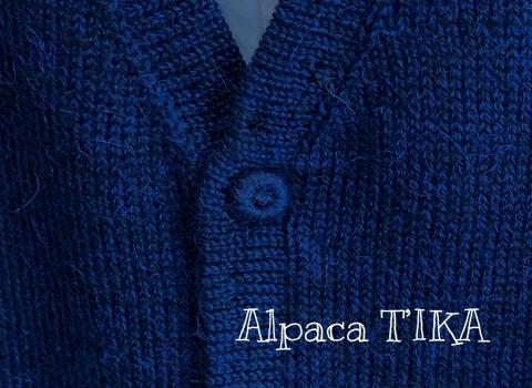 新作 薔薇のお花柄コットンスカート(ロング)・父の日企画!アルパカ100%メンズベストご購入でアルパカネックウォーマープレゼント(期間限定)_d0187468_13034994.jpg