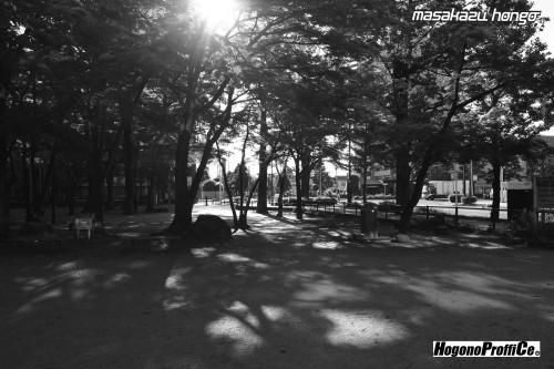 【おっ散歩カメラ放浪記:第8回】勝山公園とトライ-X_b0008475_12023343.jpg