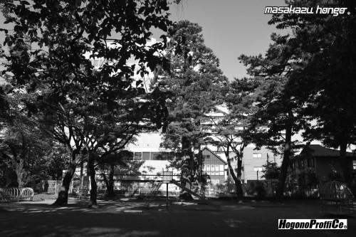 【おっ散歩カメラ放浪記:第8回】勝山公園とトライ-X_b0008475_12024643.jpg