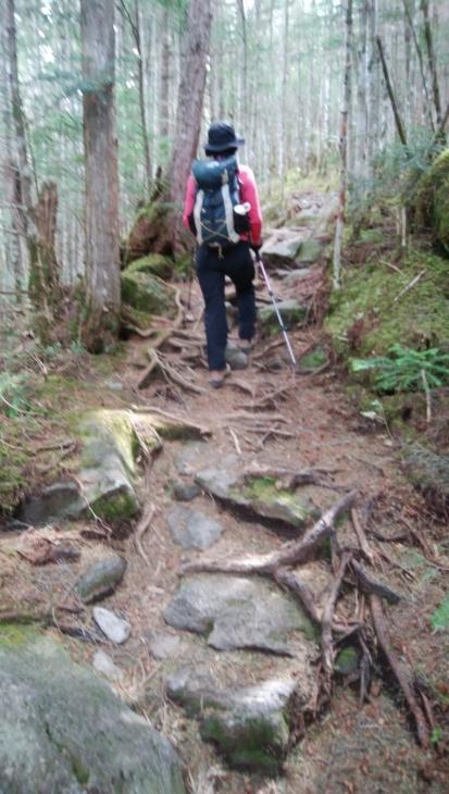 新型コロナとガイド 新型コロナ対策をした登山時の新しいガイド様式の確認と検証_e0231387_15225893.jpg