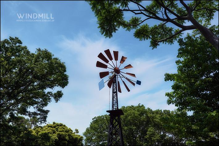 風車がまわる_f0100215_22311853.jpg