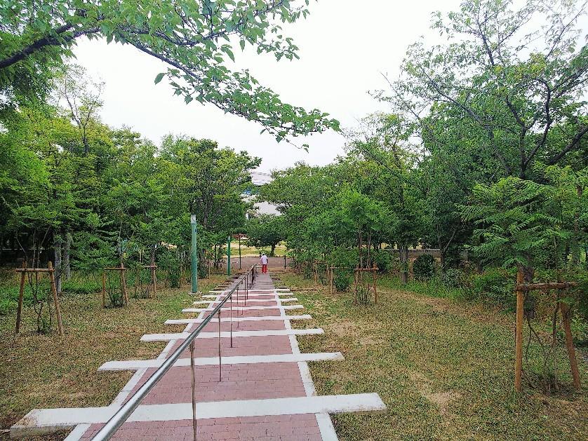 八幡屋公園_a0098418_17133507.jpg