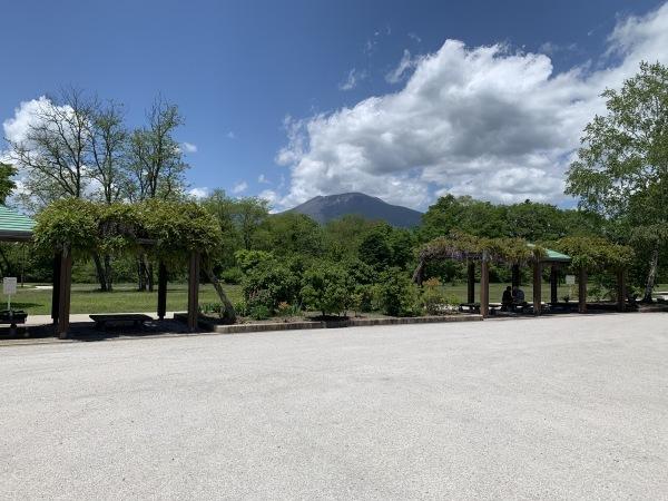 軽井沢の初夏を体感しました><_d0035921_18570271.jpg