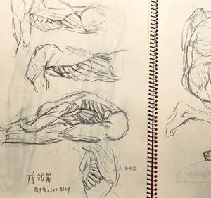 引きこもり中の体と頭の筋トレセット_f0152544_08174851.jpg