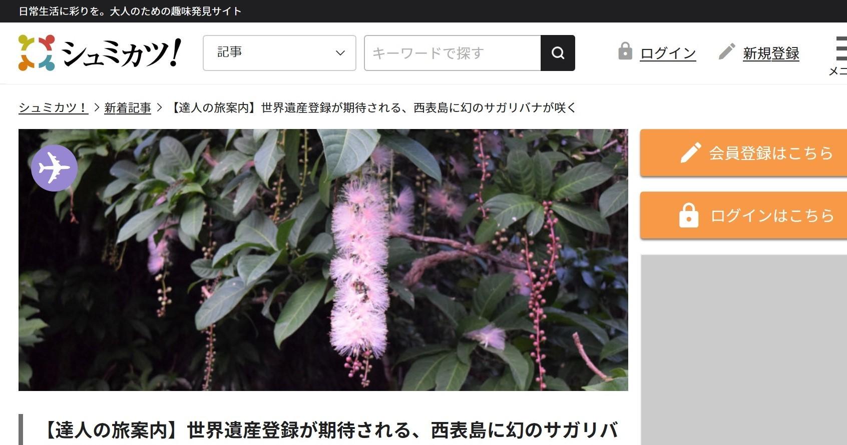 大人のための趣味サイト「シュミカツ!」で新連載スタートです_b0053082_17362671.jpg