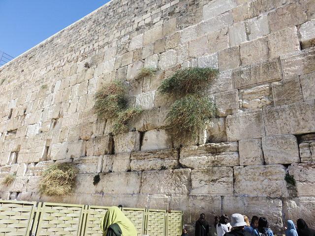 エルサレムと虹_f0346196_19052369.jpg