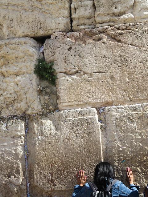 エルサレムと虹_f0346196_19263172.jpg