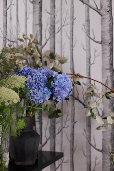 紫陽花の季節です_b0208604_23174977.jpg