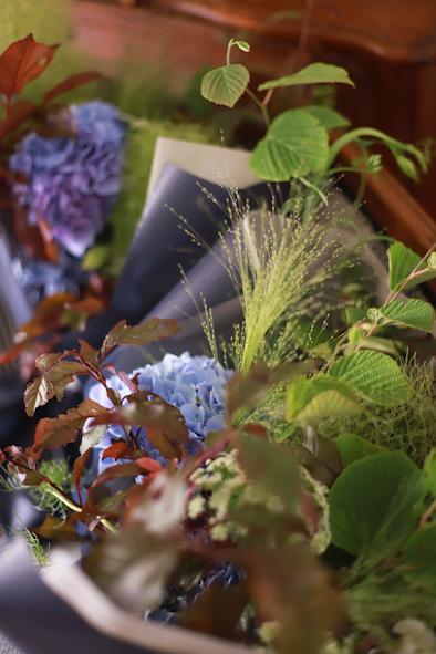 紫陽花の季節です_b0208604_23235808.jpg