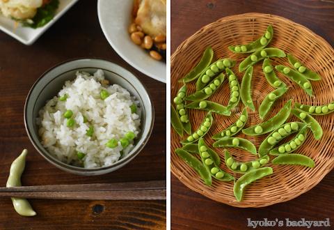 豆ごはん、チキンと大豆の煮物、かき揚げが並んだ和食な食卓_b0253205_23504454.jpg
