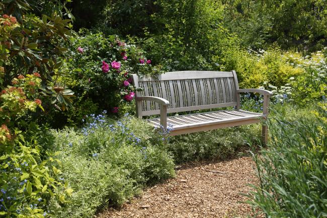 中之条ガーデンズ2020 #1 シンボルツリーのローズガーデン _a0357206_20311862.jpg