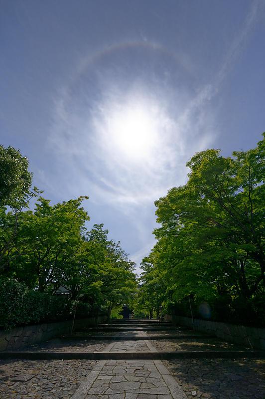 真緑巡り@真如堂_f0032011_18100760.jpg