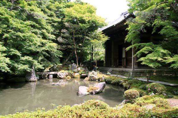 蓮華寺 緑に染まる_e0048413_21134724.jpg