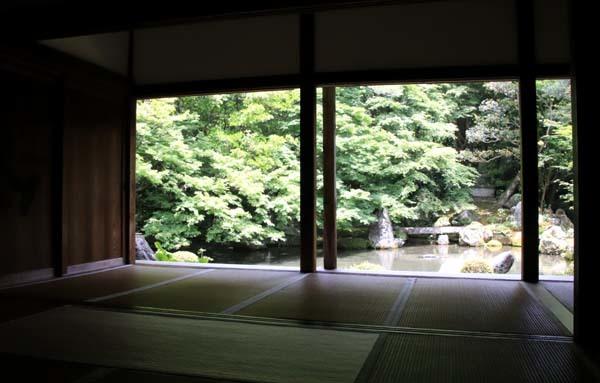 蓮華寺 緑に染まる_e0048413_21135203.jpg
